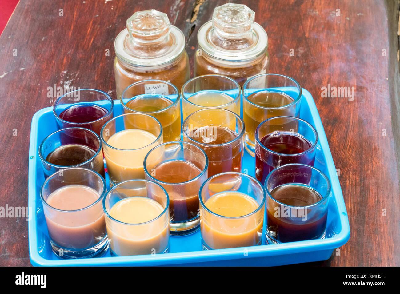 Coffee Cupping, Ubud, Bali, Indonesia - Stock Image
