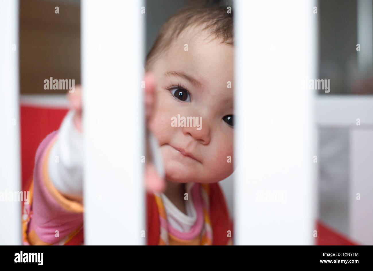 Ten month baby girl playing hide-and-go-seek behind the bars white cot - Stock Image