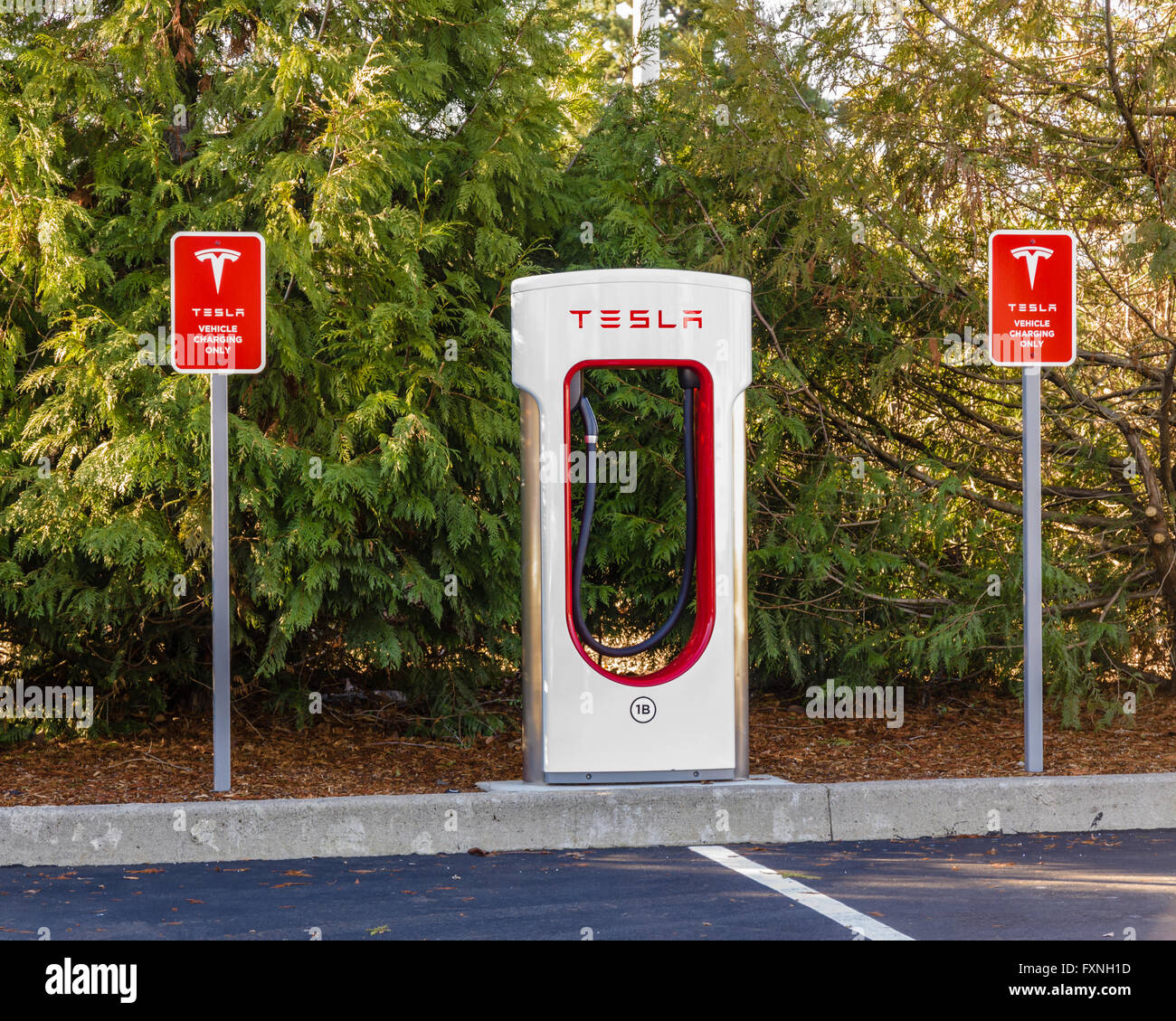 Electric Supercharger Australia: Tesla Charger Stock Photos & Tesla Charger Stock Images