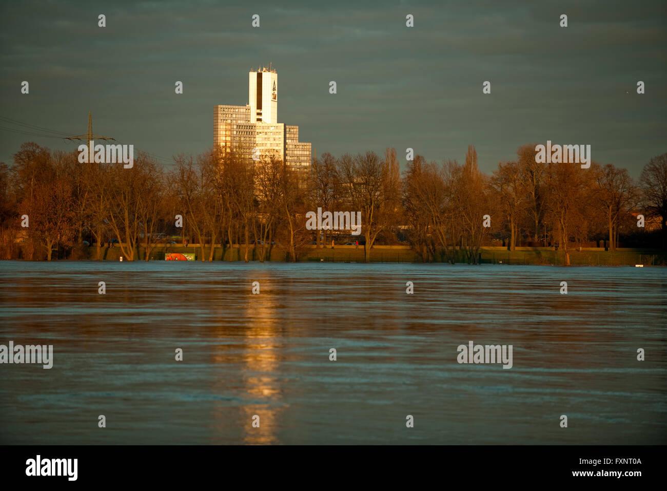 Köln, Blick über den Hochwasser führenden Rhein von Bayenthal zum rechtsrheinischen Stadtteil Poll - Stock Image