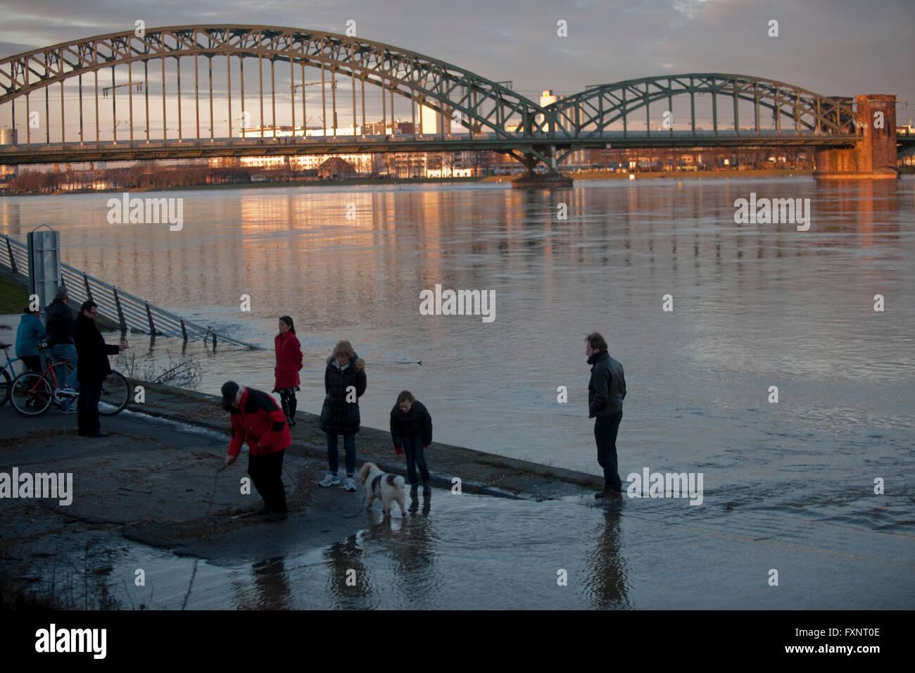 Köln, Bayenthal, Hochwasser an der Schönhauserstrasse, im Hintergrund die Südbrücke - Stock Image