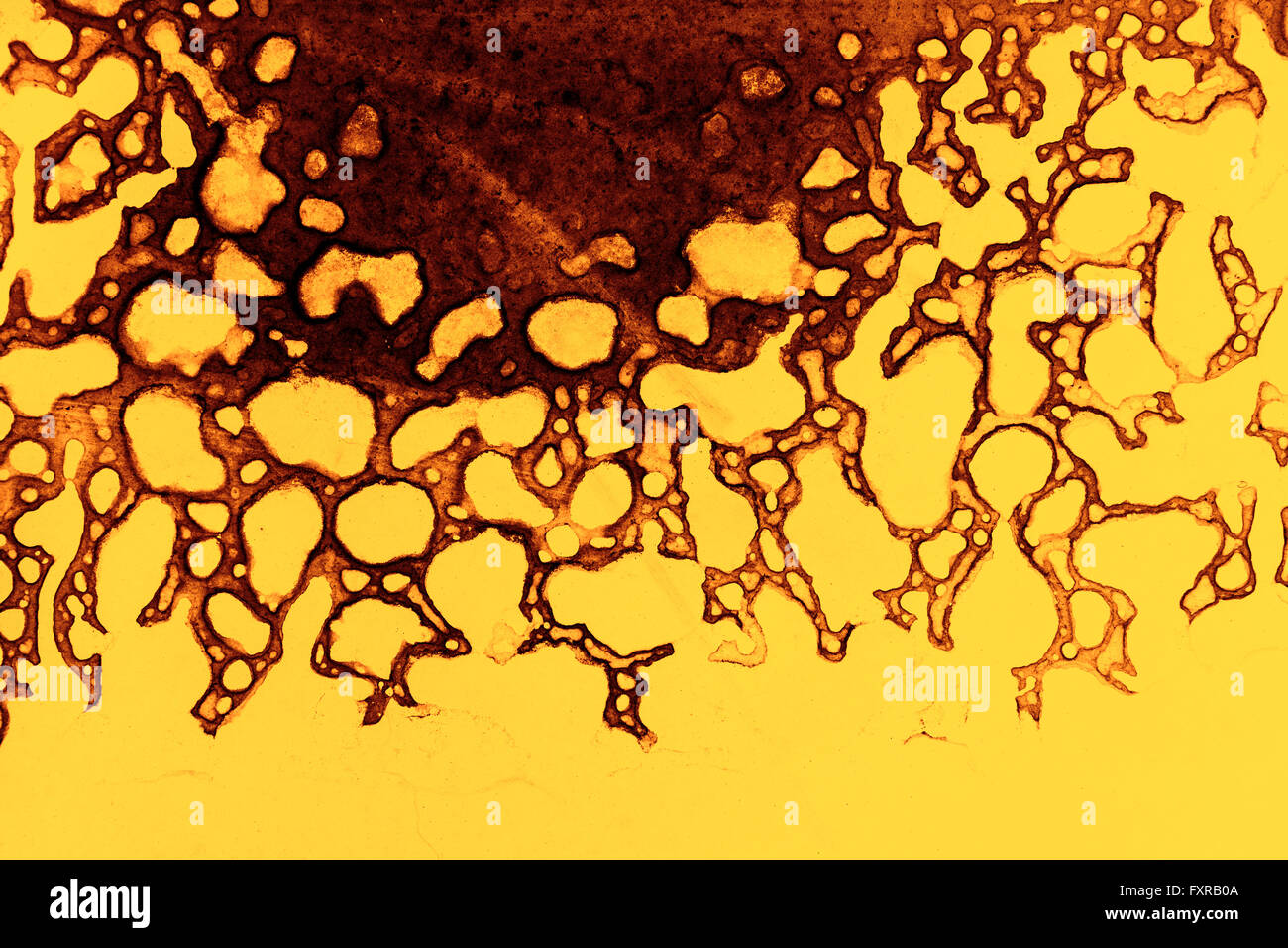 Abstract pattern in yellow and brown - Stock Image