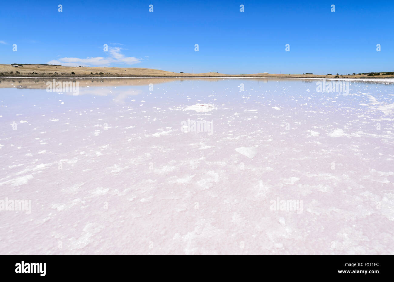 Saltpan near Parnka Point, the Coorong National Park, Fleurieu Peninsula, South Australia, SA, Australia Stock Photo