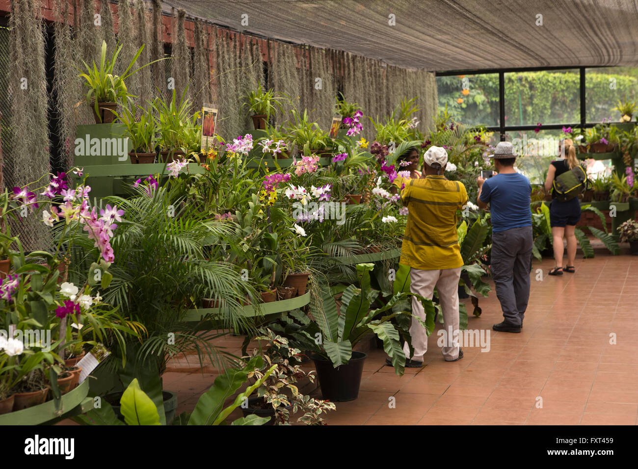 Peradeniya Botanic Garden Stock Photos & Peradeniya Botanic Garden ...