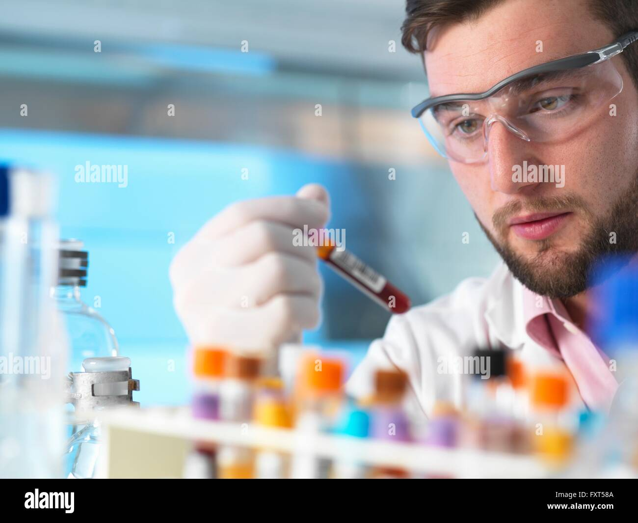 Doctor examining patient medical samples in laboratory - Stock Image