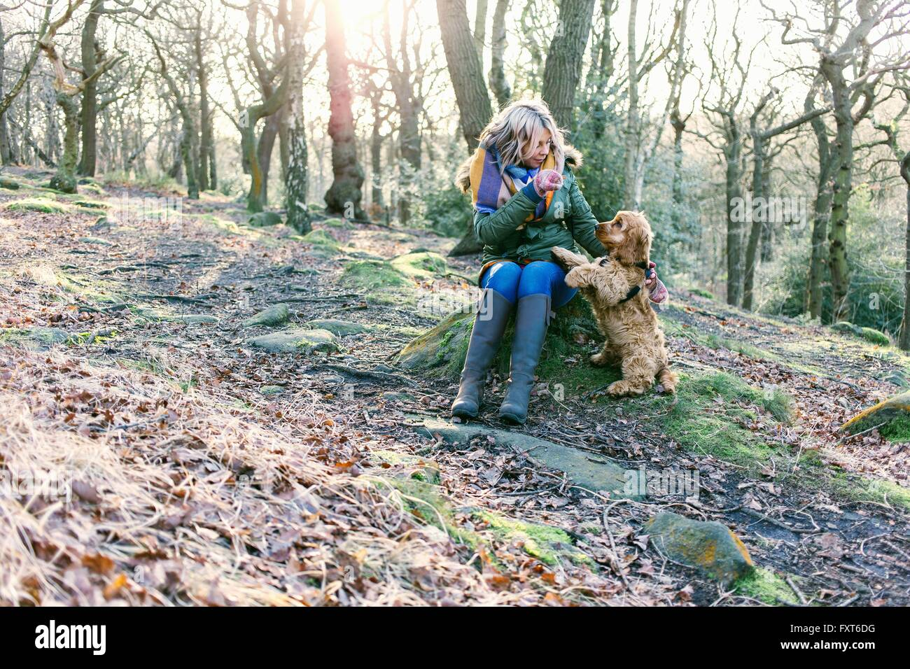 Woman giving treat to puppy in forest Stock Photo