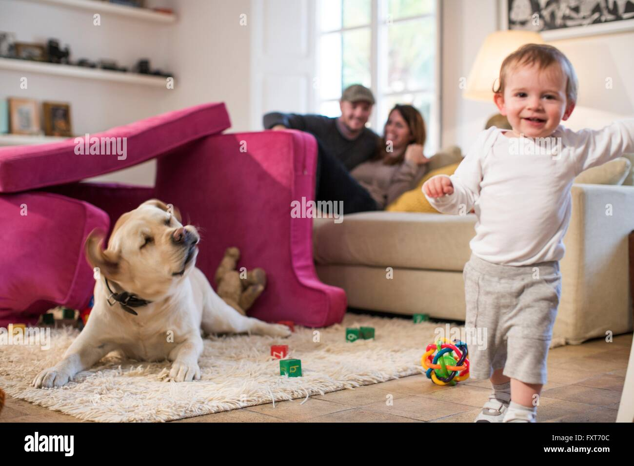 Baby boy and pet dog playing in fort made from sofa cushions, looking at camera smiling - Stock Image