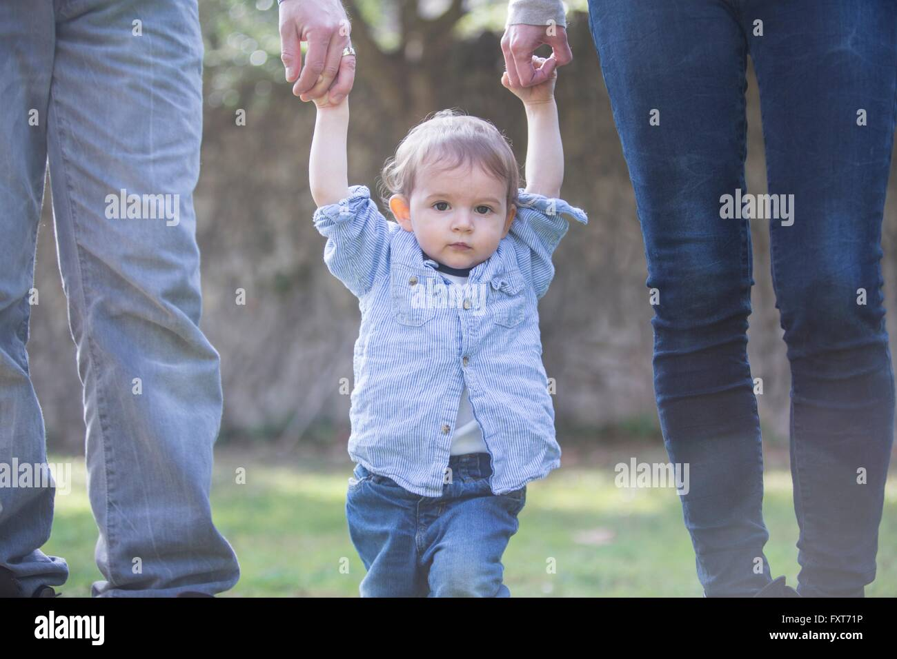 Low section of parents holding baby boys hands - Stock Image