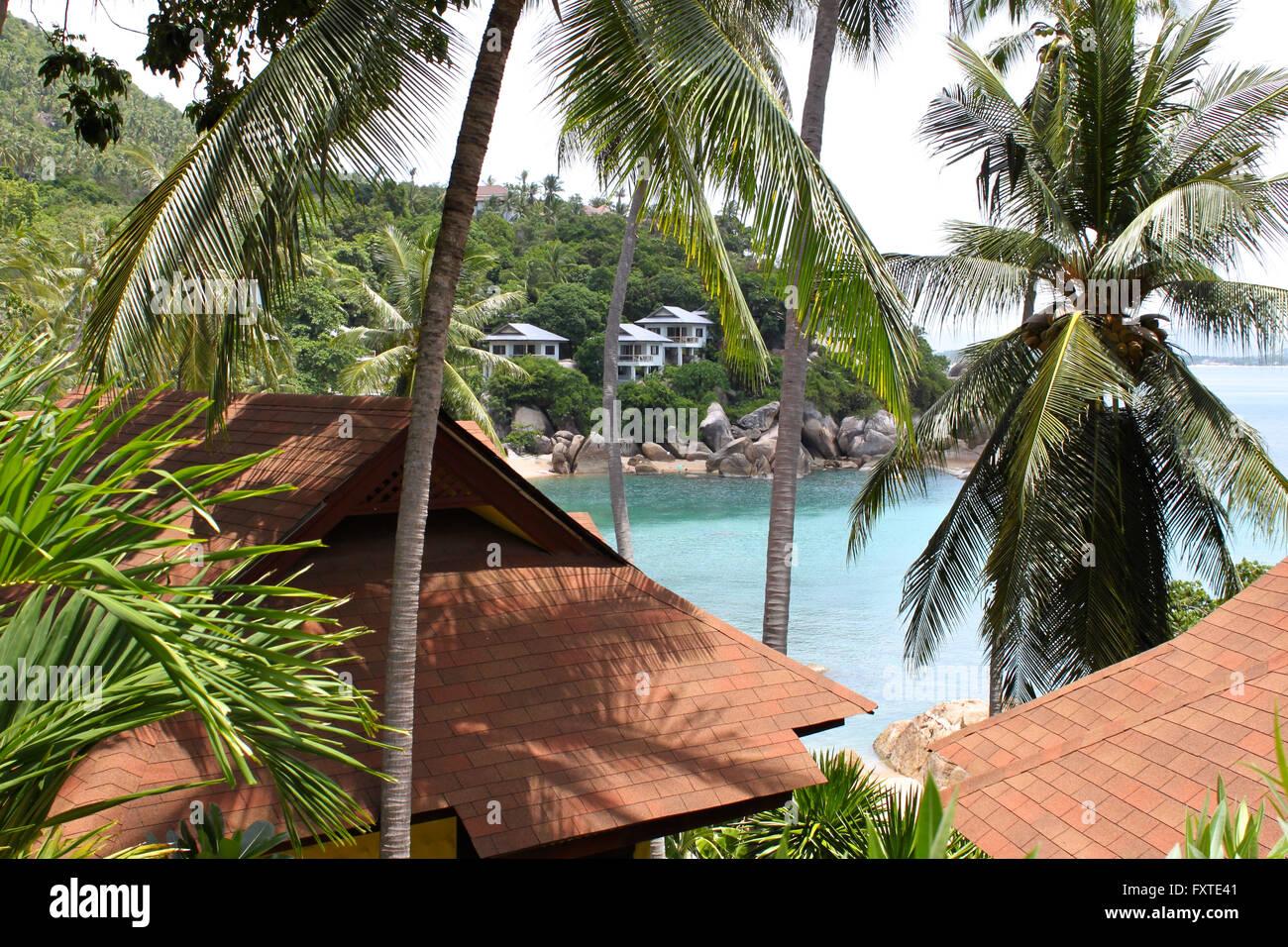 Tropical landscape on the island of Koh Samui, Thailand, Southeast Asia - Stock Image