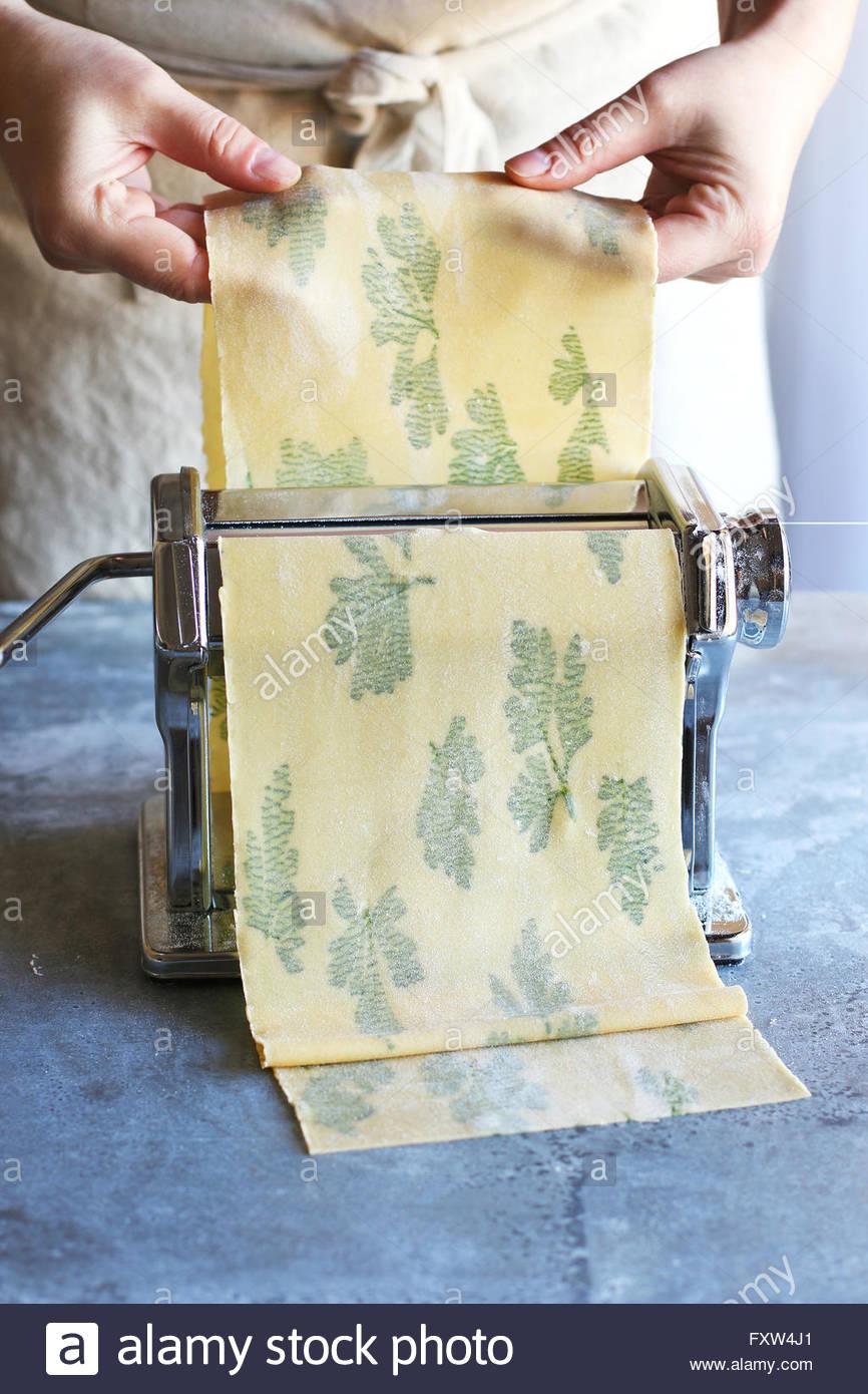 Making italian laminated parsley pasta sheet with pasta machine. - Stock Image