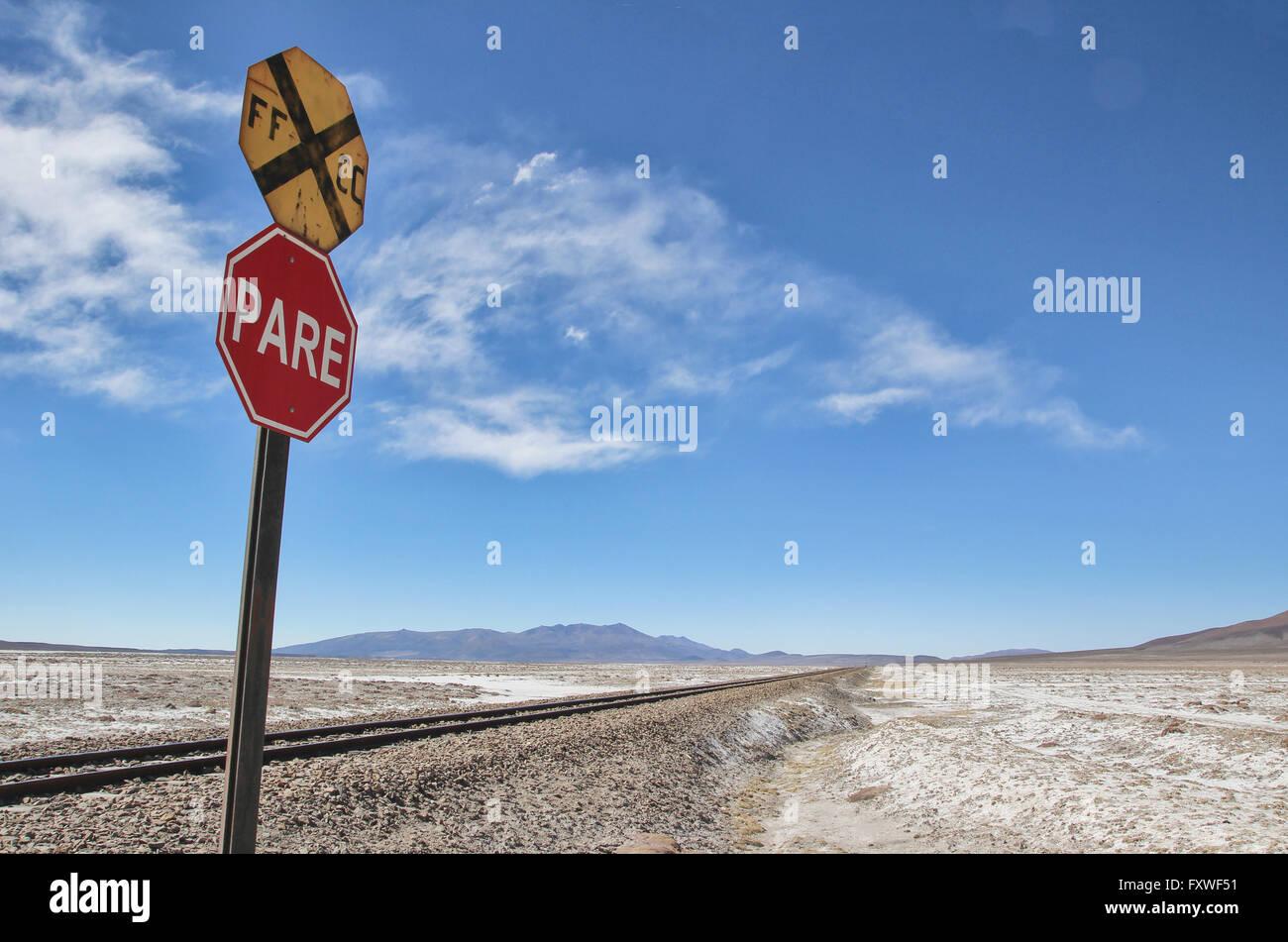 Bolivia -  21/08/2013  -  Bolivia / Salar de Uyuni / Uyuni  -  Salt desert, Uyuni Isla del Pescado   -  Sandrine - Stock Image