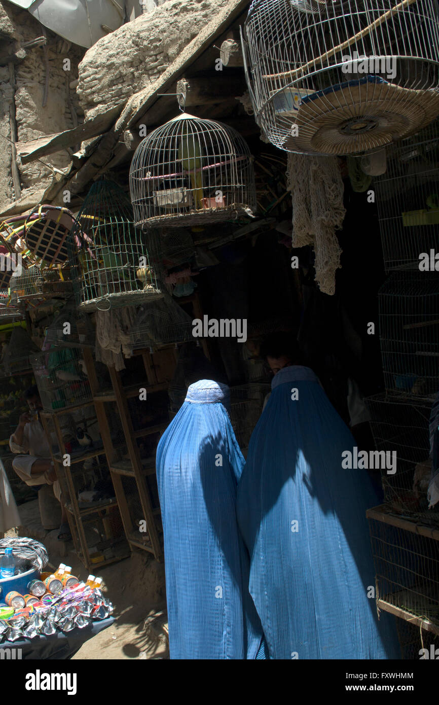 Burqa wearing women shop for birds in cages in Mandawi market, largest and busiest in Kabul. Site of frequent bomb - Stock Image