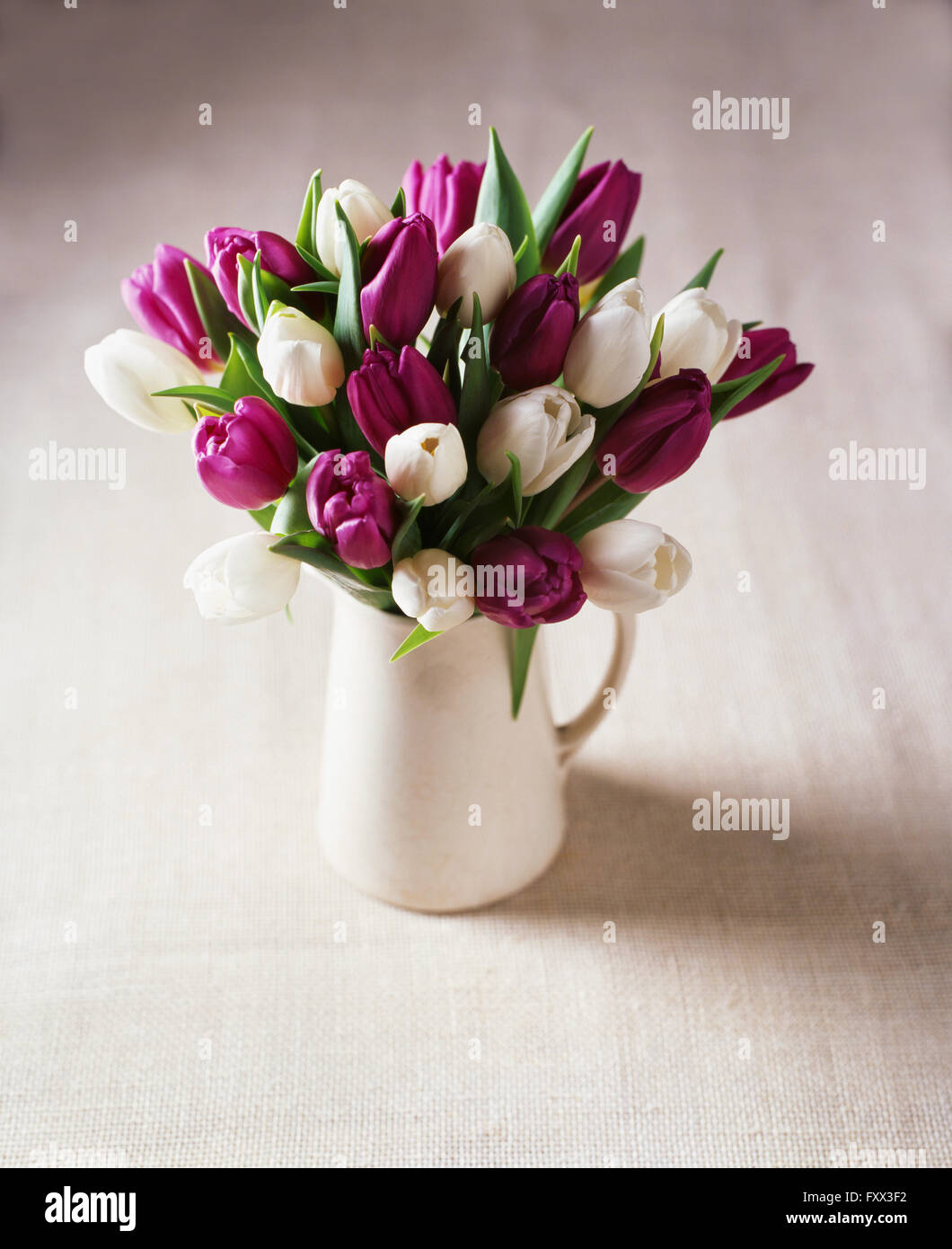 White And Purple Tulip Flower Arrangement In Jug Stock Photo Alamy