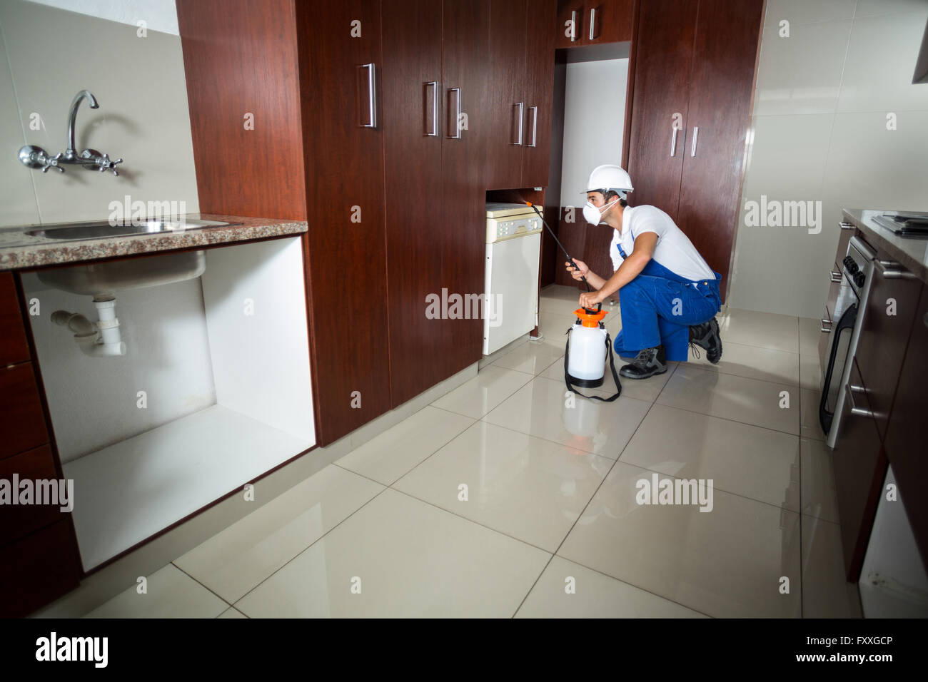 Manual worker using pest spray in cabinets - Stock Image