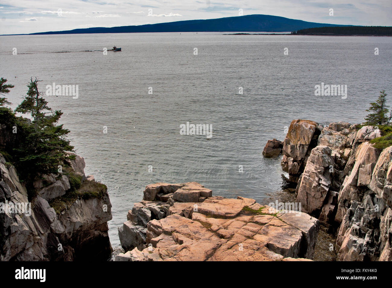 State of Maine, Schoodic Peninsula, Acadia National Park, lobster fisherman heads home on Frenchman Bay, Ravens - Stock Image