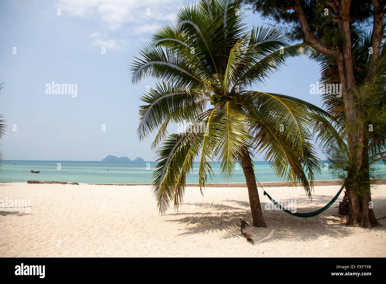 Palm tree beach, white sand and blue water at the Island Pha Ngan, Thailand Stock Photo
