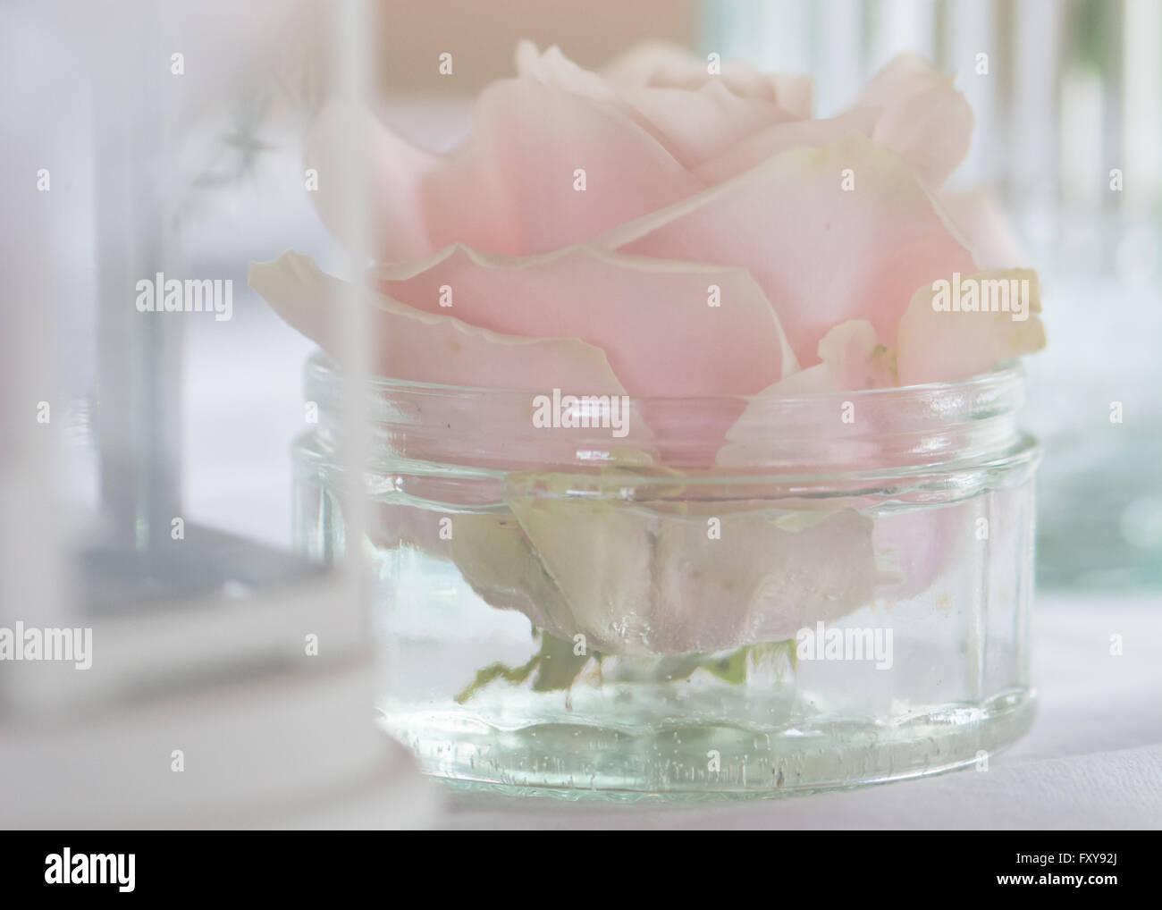 pale pastel pink rose in glass jar boho vintage wedding flowers table arrangements - Stock Image