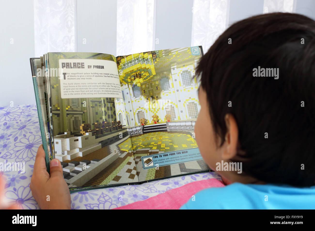 Young Boy Reading Minecraft Book Stock Photos & Young Boy Reading ...