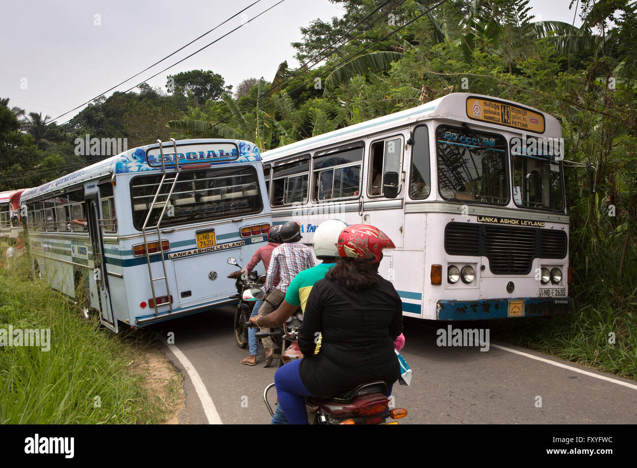 Sri Lanka, Kandy, Embekke, two buses passing with difficulty on single track road - Stock Image
