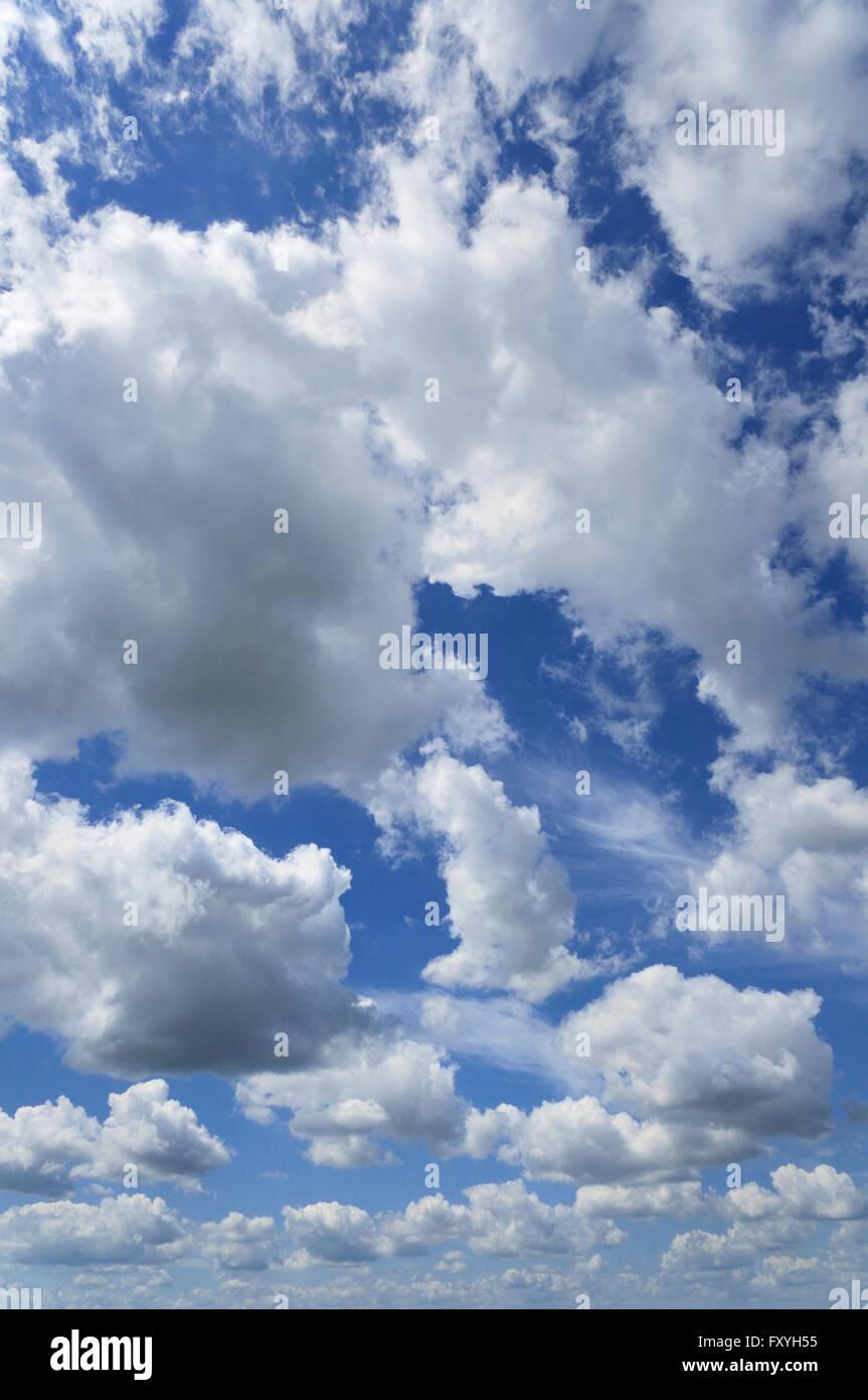 Fluffy clouds (cumulus), North Rhine-Westphalia, Germany - Stock Image