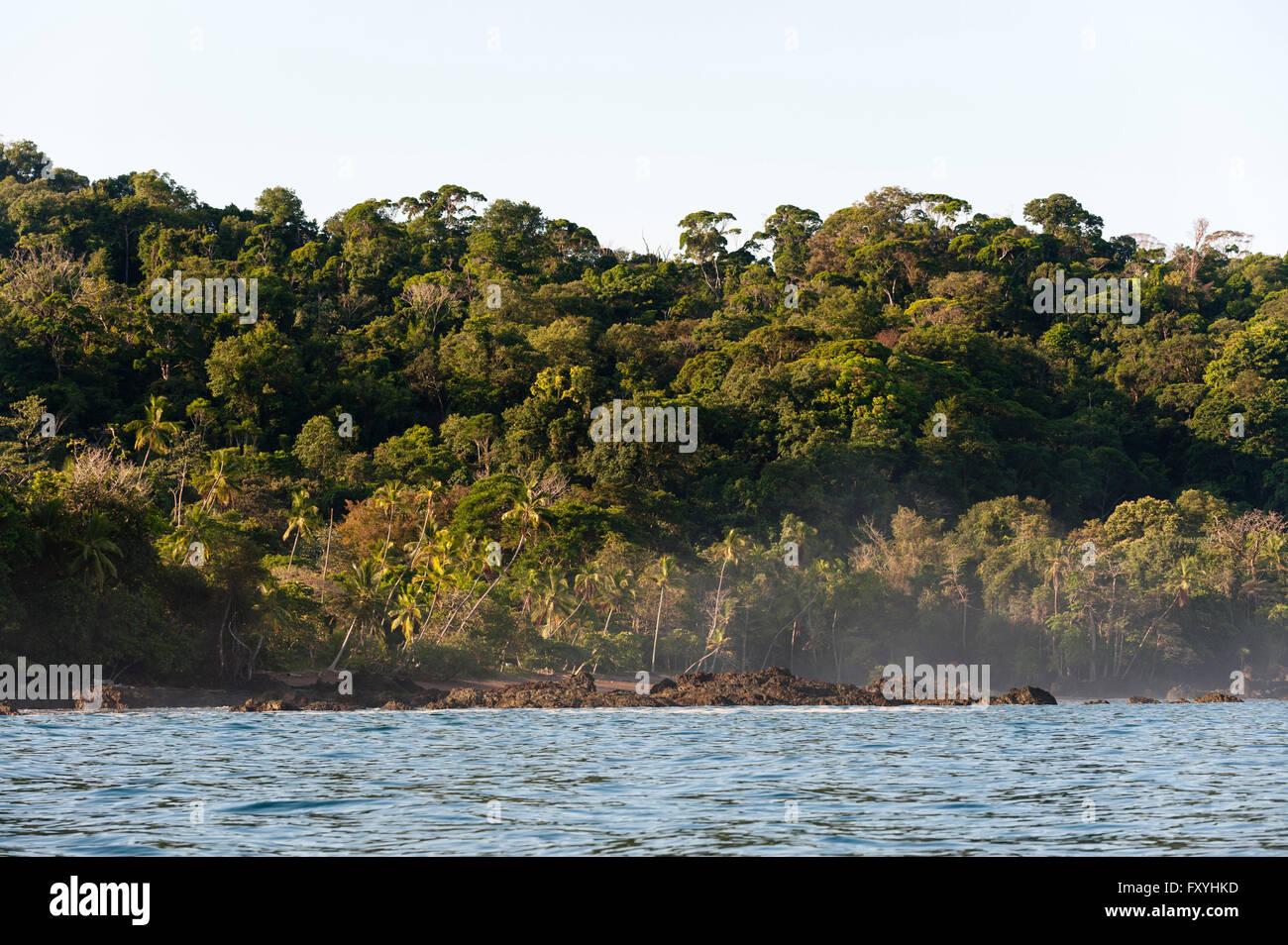 Corcovado National Park, Osa peninsula, Costa Rica - Stock Image