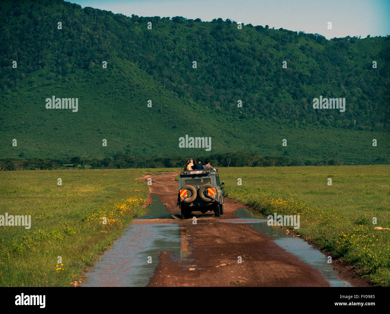 Tourist on safari searching for predators in the Ngorongoro crater conservation area. - Stock Image