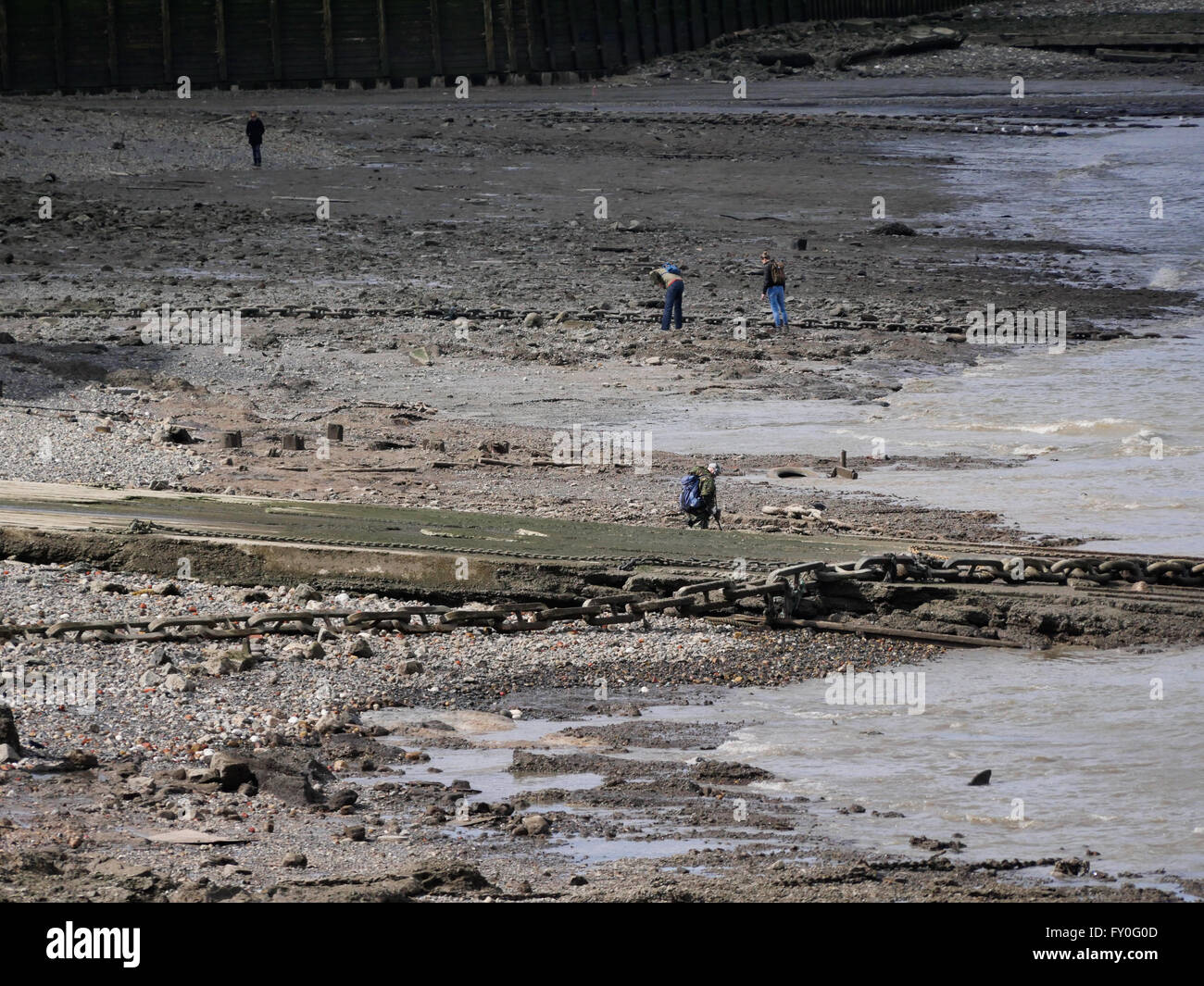 Searching  the Foreshore near Greenwich Pier - Stock Image