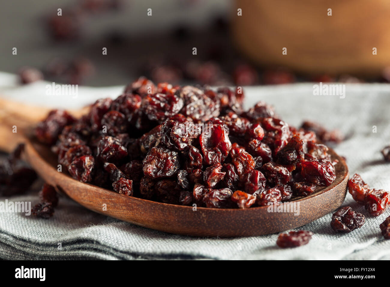 Homemade Dry Black Currants Ready to Eat - Stock Image