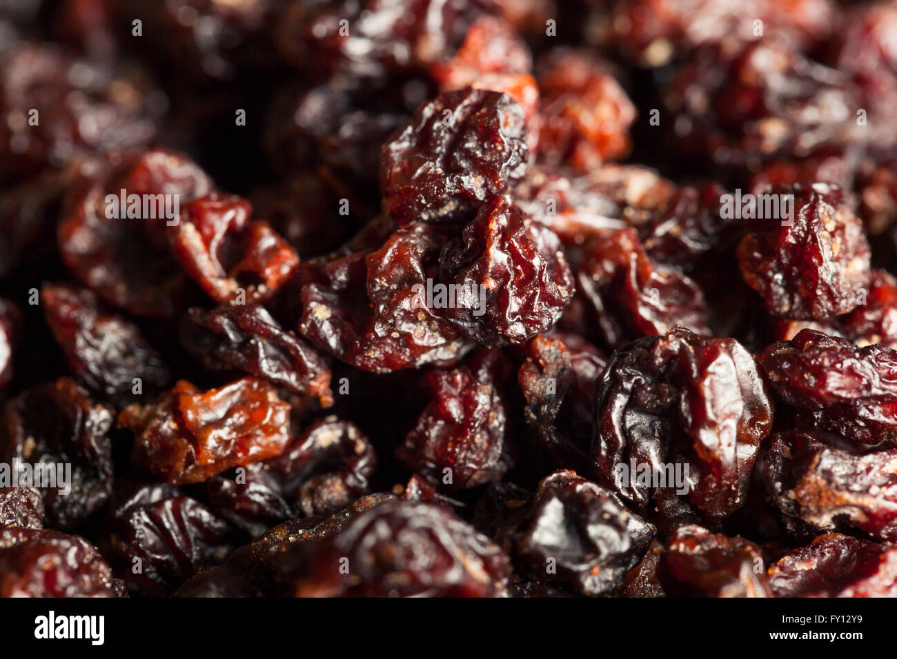 Homemade Dry Black Currants Ready to Eat Stock Photo