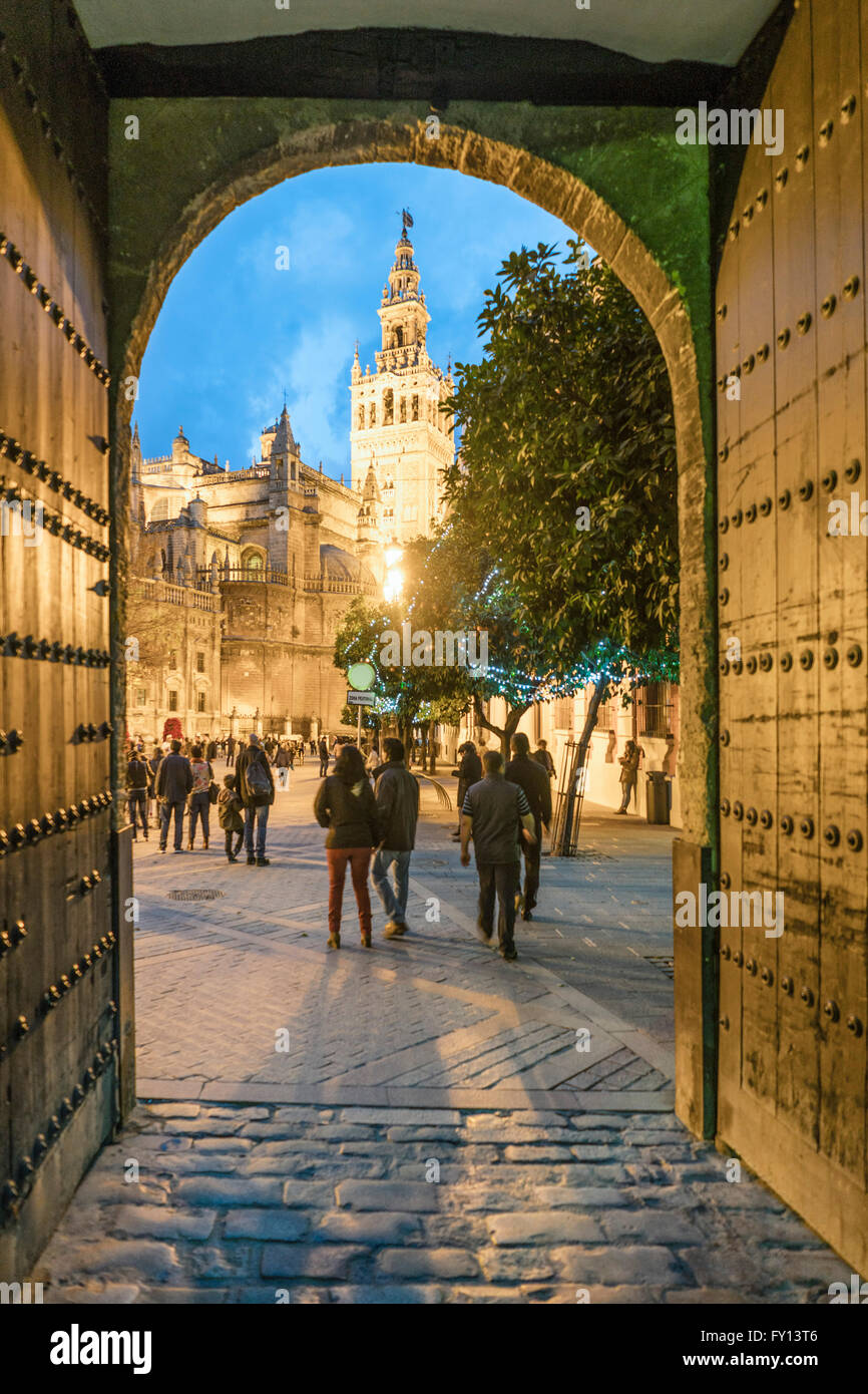 Giralda bell tower , cathedral, view from Los Reales Alcazares, Sevilla,  Andalucia, Spain, - Stock Image