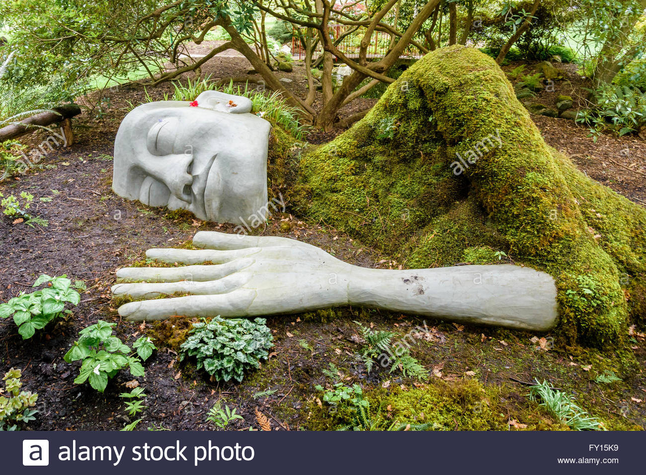 The Moss Lady, Beacon Hill Park, Victoria, British Columbia, Canada - Stock Image