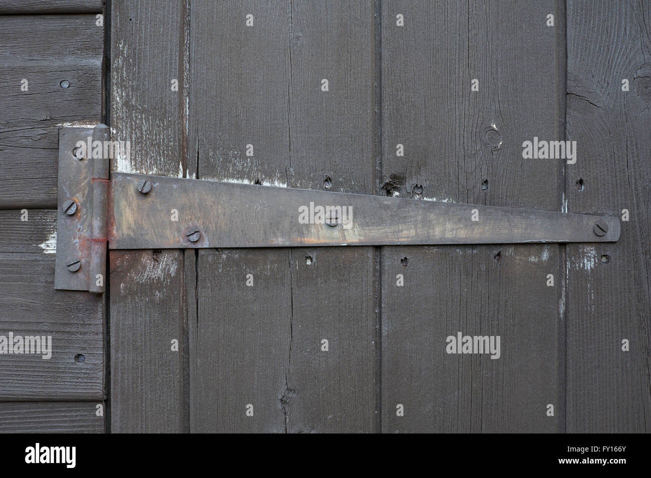 Old tee hinge on shed door - Stock Image
