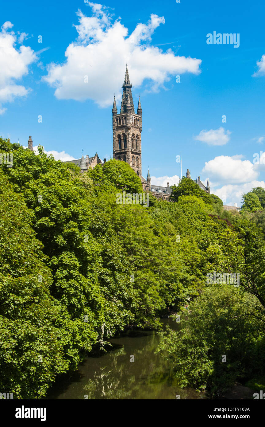 The University of Glasgow with the river Kelvin running below it, taken from Kelvingrove Park on a sunny summer - Stock Image