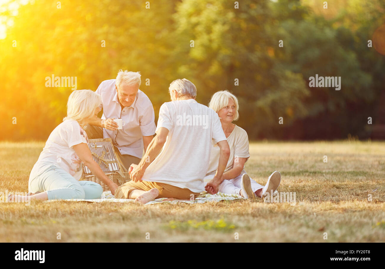 Happy group of seniors making a picnic in the park in summer - Stock Image