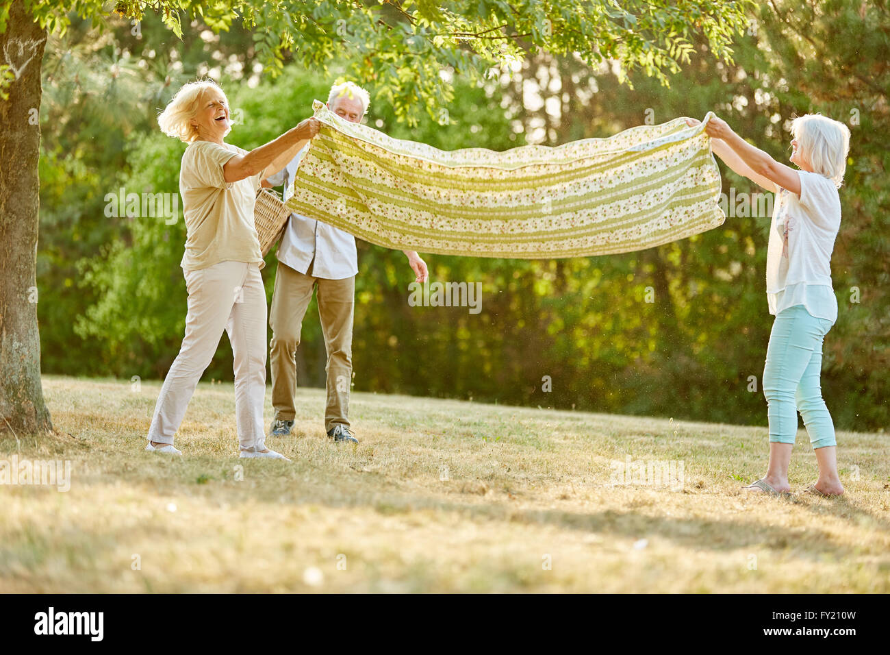 Group of seniors prepare blanket for picninc in summer - Stock Image
