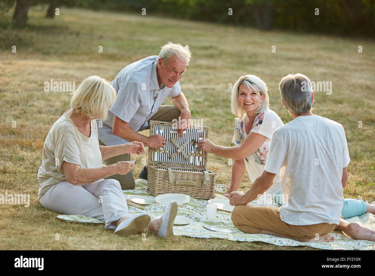 Friends having a picnic together in the park in summer in the nature - Stock Image