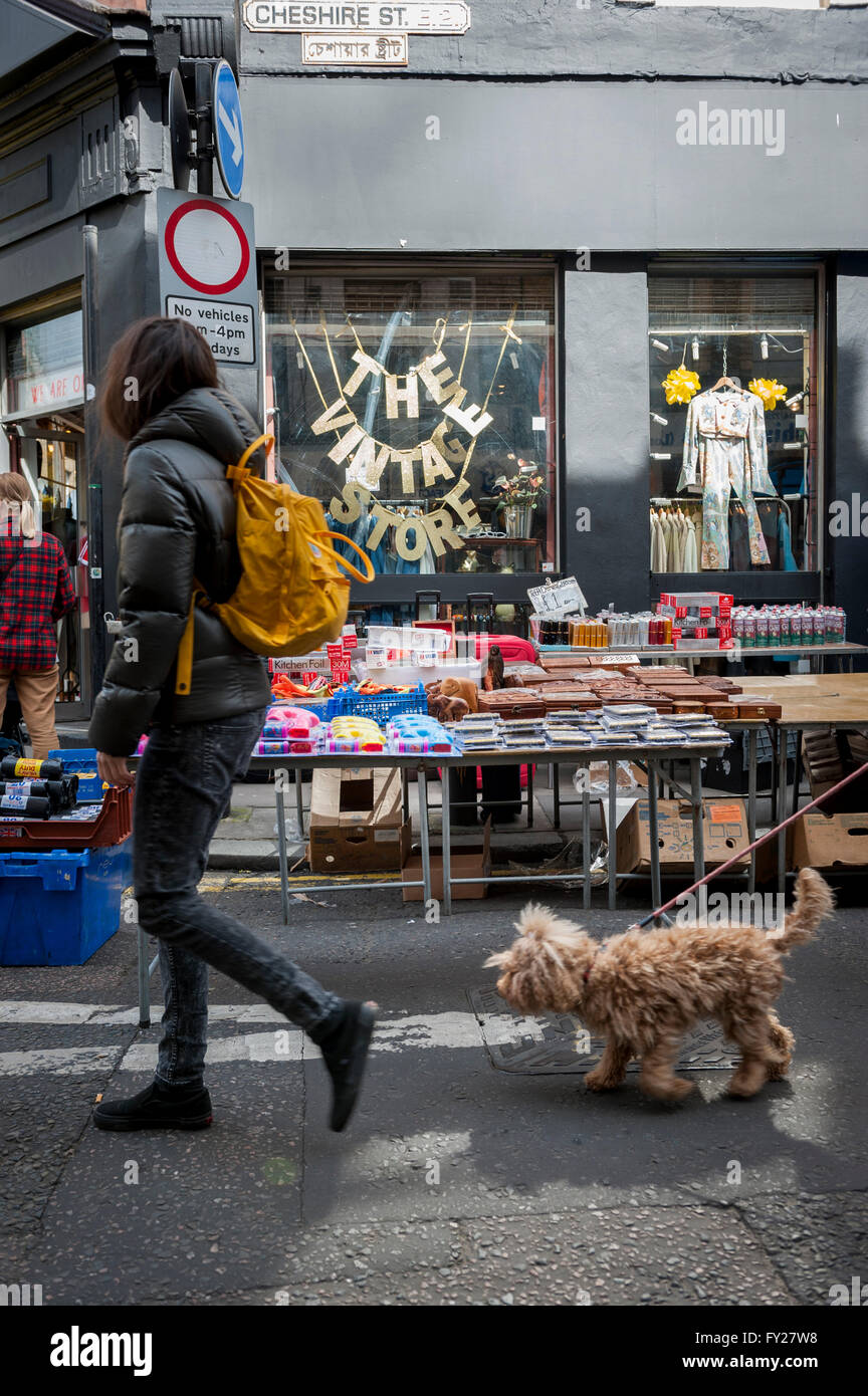 A rather shaggy dog walking on the market in Cheshire Street East London - Stock Image