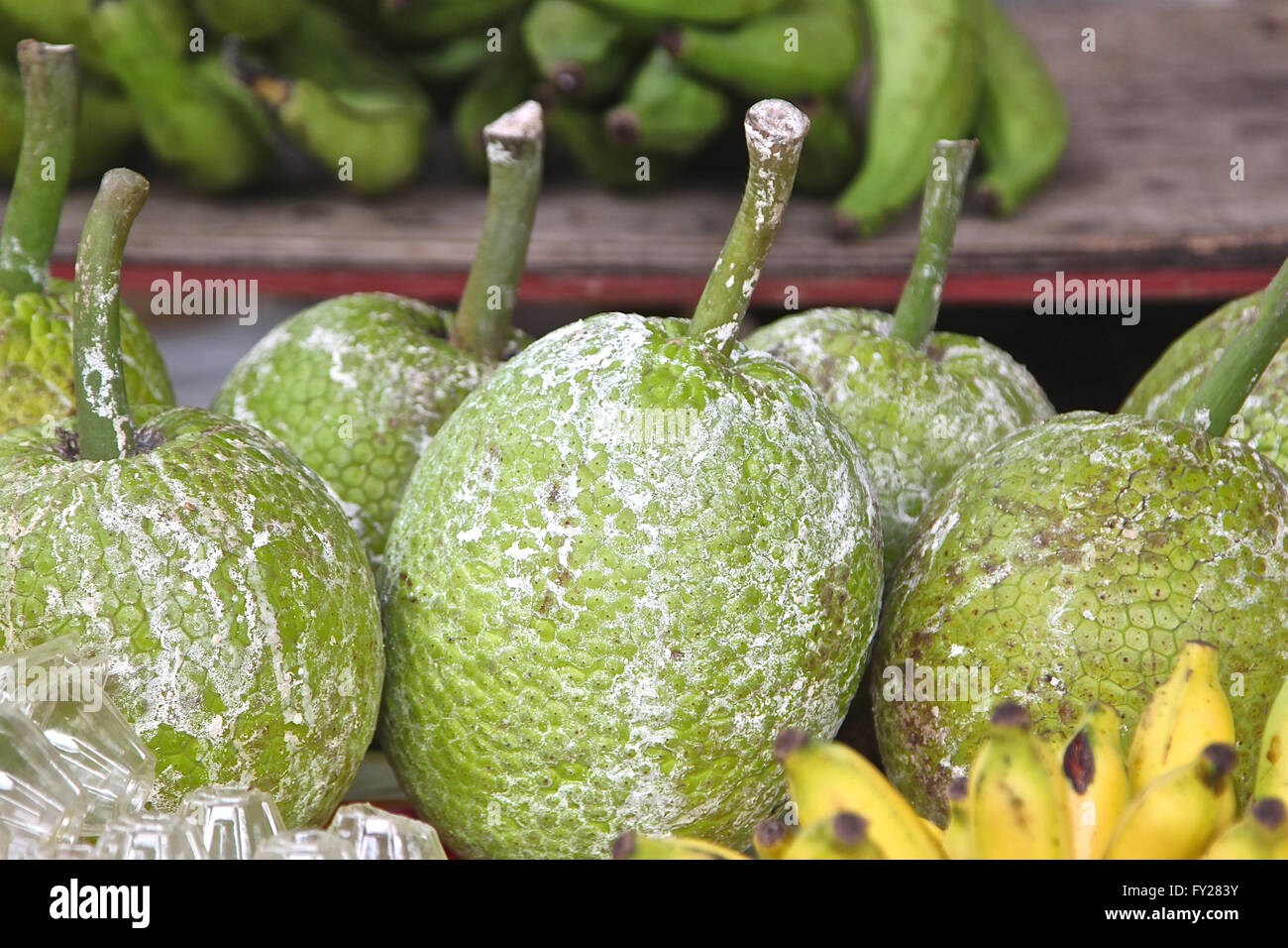 endemic tropical fruit, the Seychelles, the equator - Stock Image