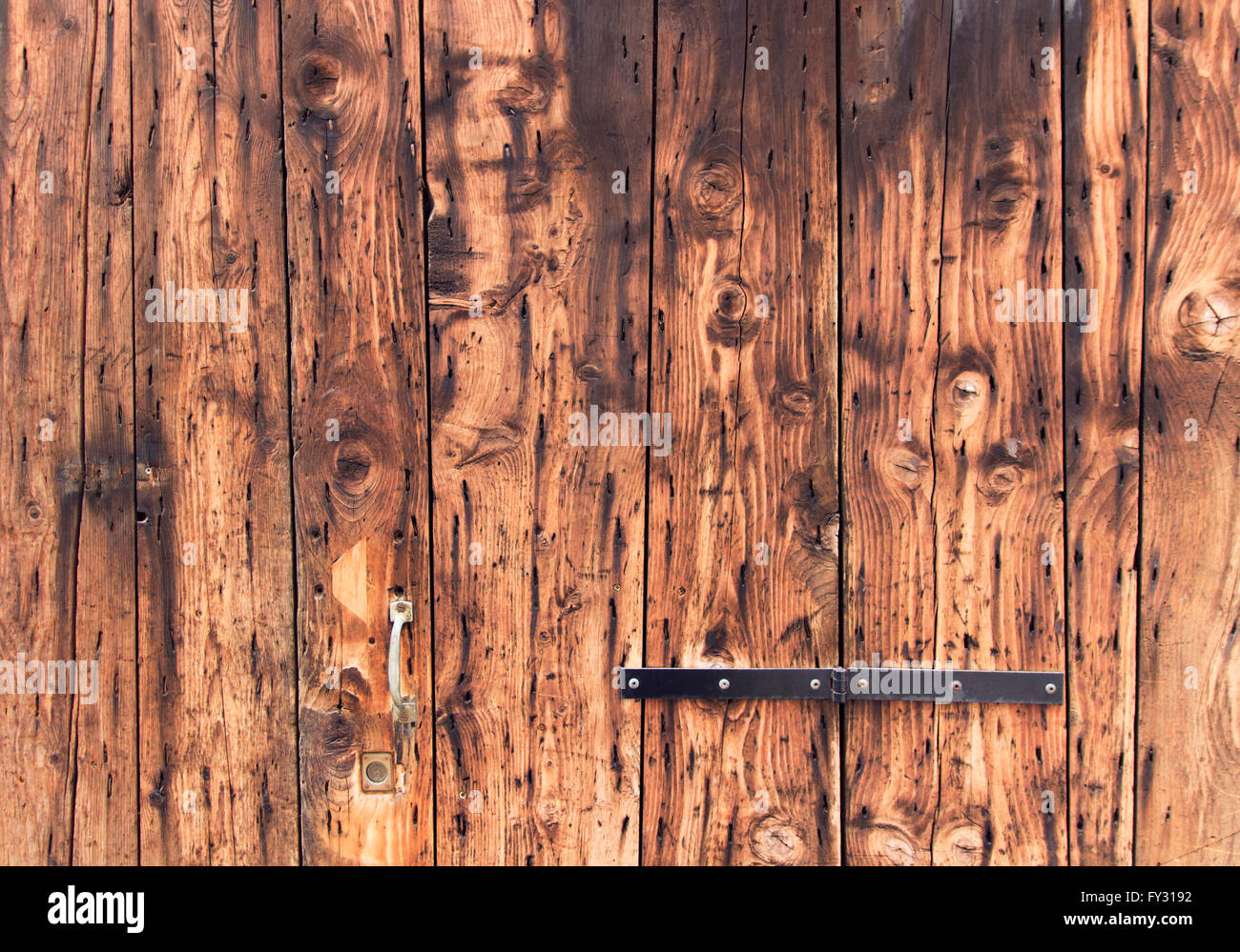 Old Wooden Door Background Closeup Natural Oak Tree Planks Surface Weathered Rustic Wood Material Brown Color Textured Wall