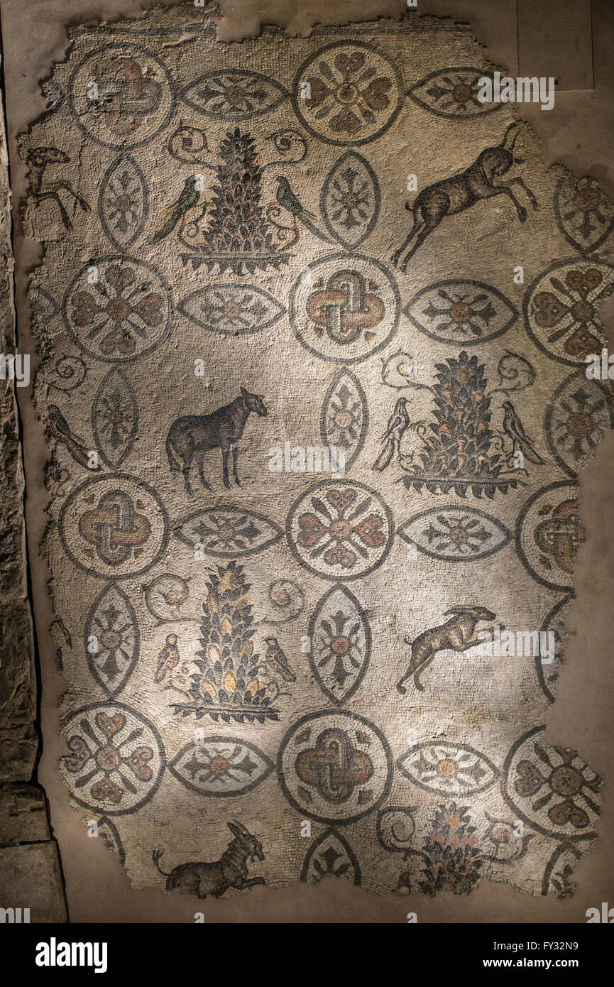 Mosaic floor with animal symbolism, 4th century, exposed in the belfry of the Romanesque Basilica, Aquileia, Udine - Stock Image