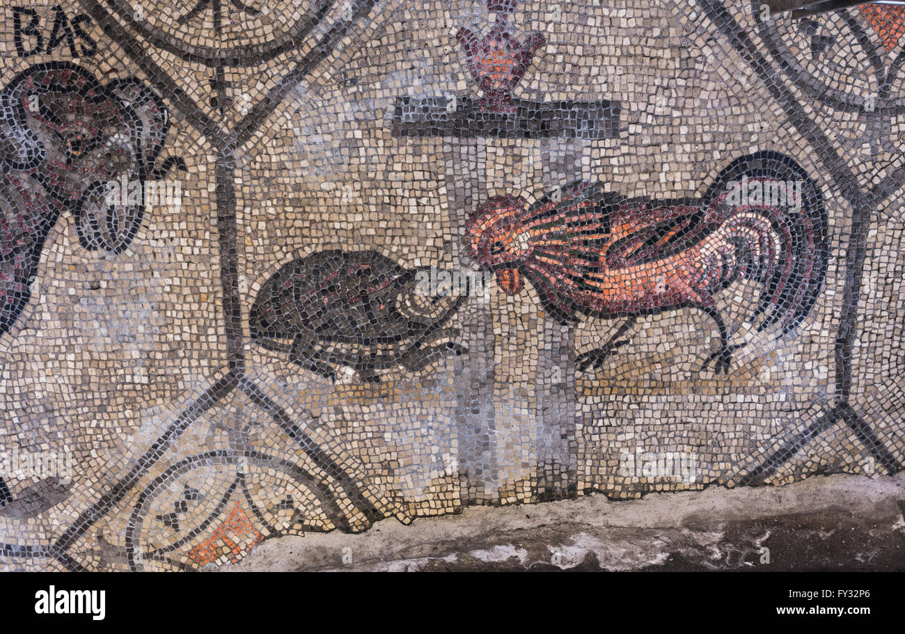 Early Christian mosaic with animal symbolism, 4th century, exposed in Romanesque Basilica, Aquileia, Udine province - Stock Image