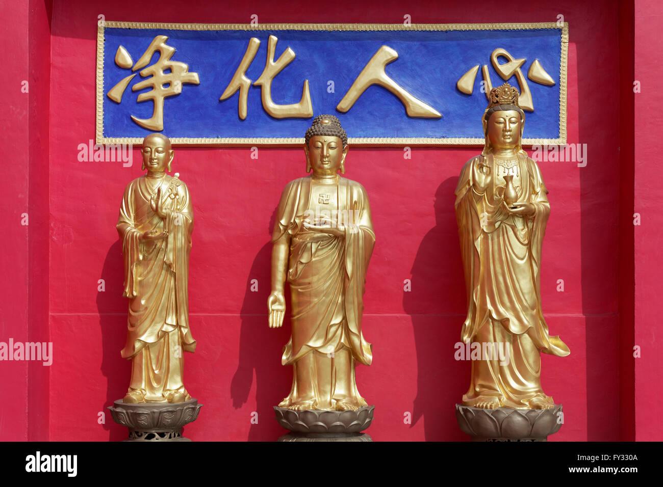 Buddhas Koon Yum, Yao Shi Fo and Di Zhang, golden statues, Ten Thousand Buddhas Monastery, Sha Tin, New Territories, - Stock Image