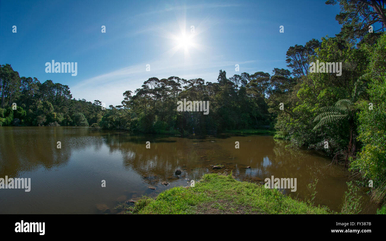 Lake on a sunny summer day. Auckland, New Zealand - Stock Image