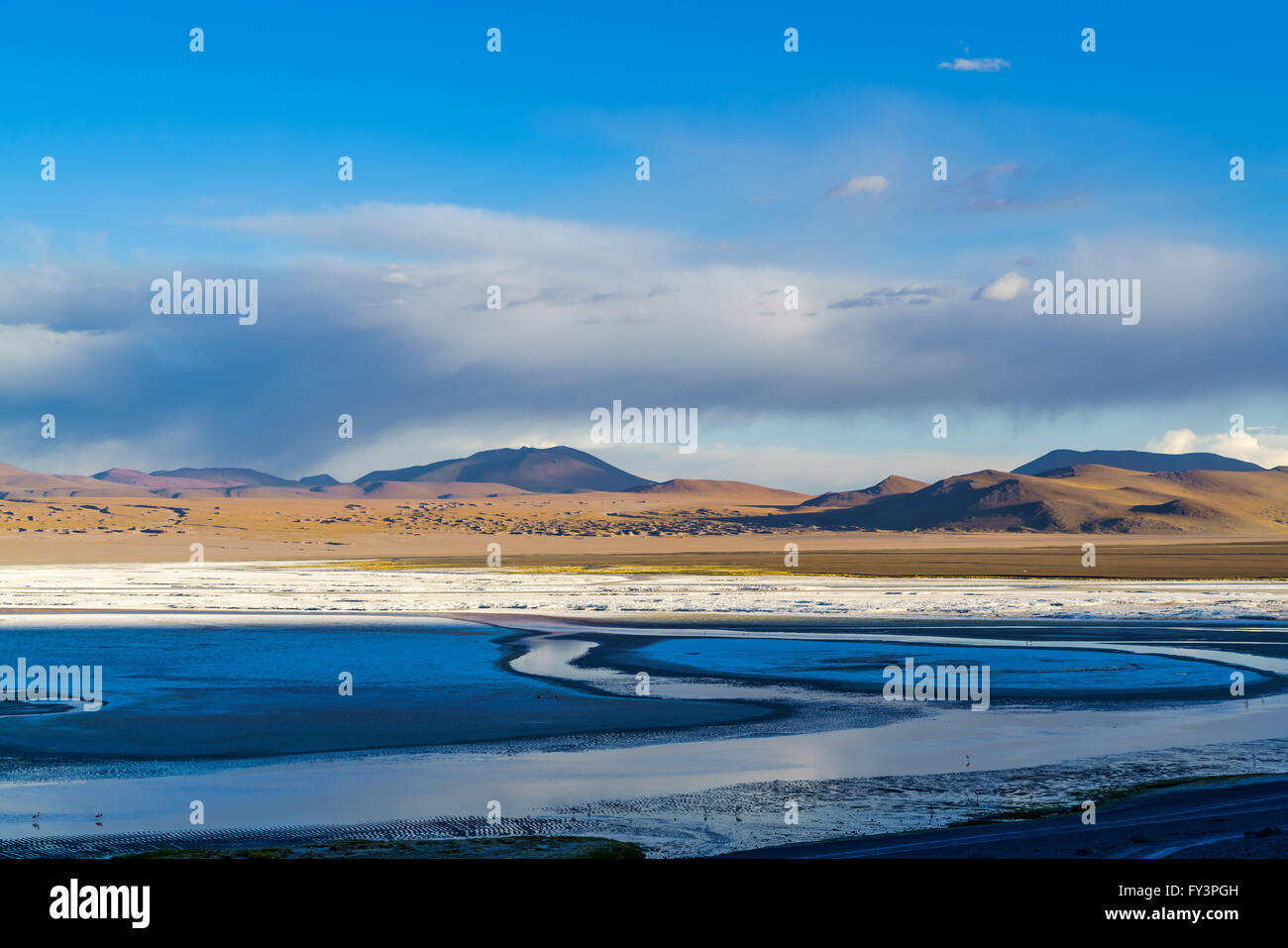 View of Laguna Corolada in The national Park of Bolivia. - Stock Image