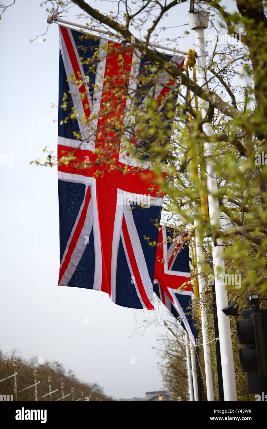 The Mall, London, 21 April 2016 - The Mall, London, 21 April 2016 - Flags in the Mall to celebrate the Queen's - Stock Image