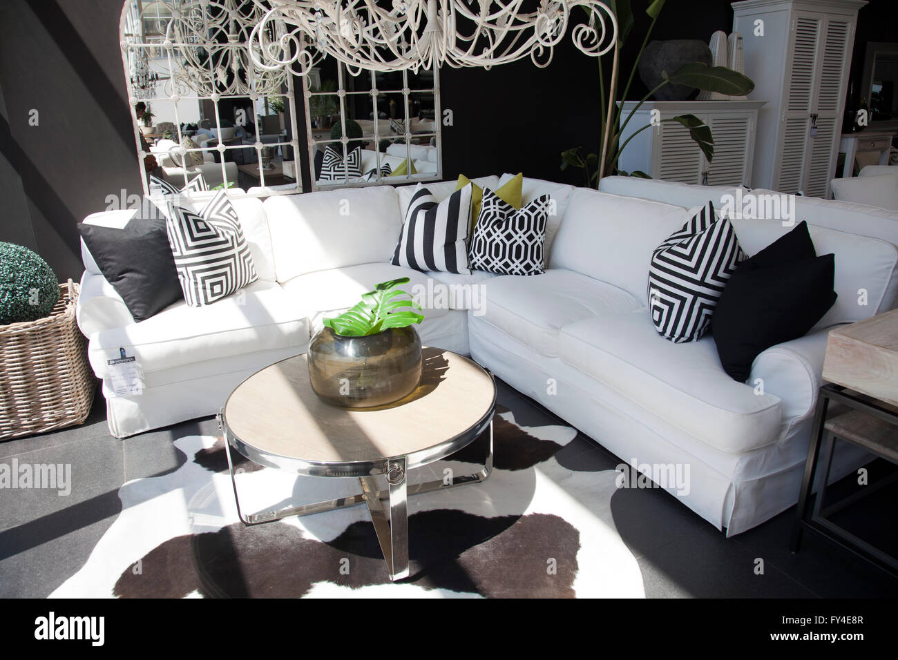 sofas in furniture shop in cape town south africa stock photo 102746583 alamy. Black Bedroom Furniture Sets. Home Design Ideas