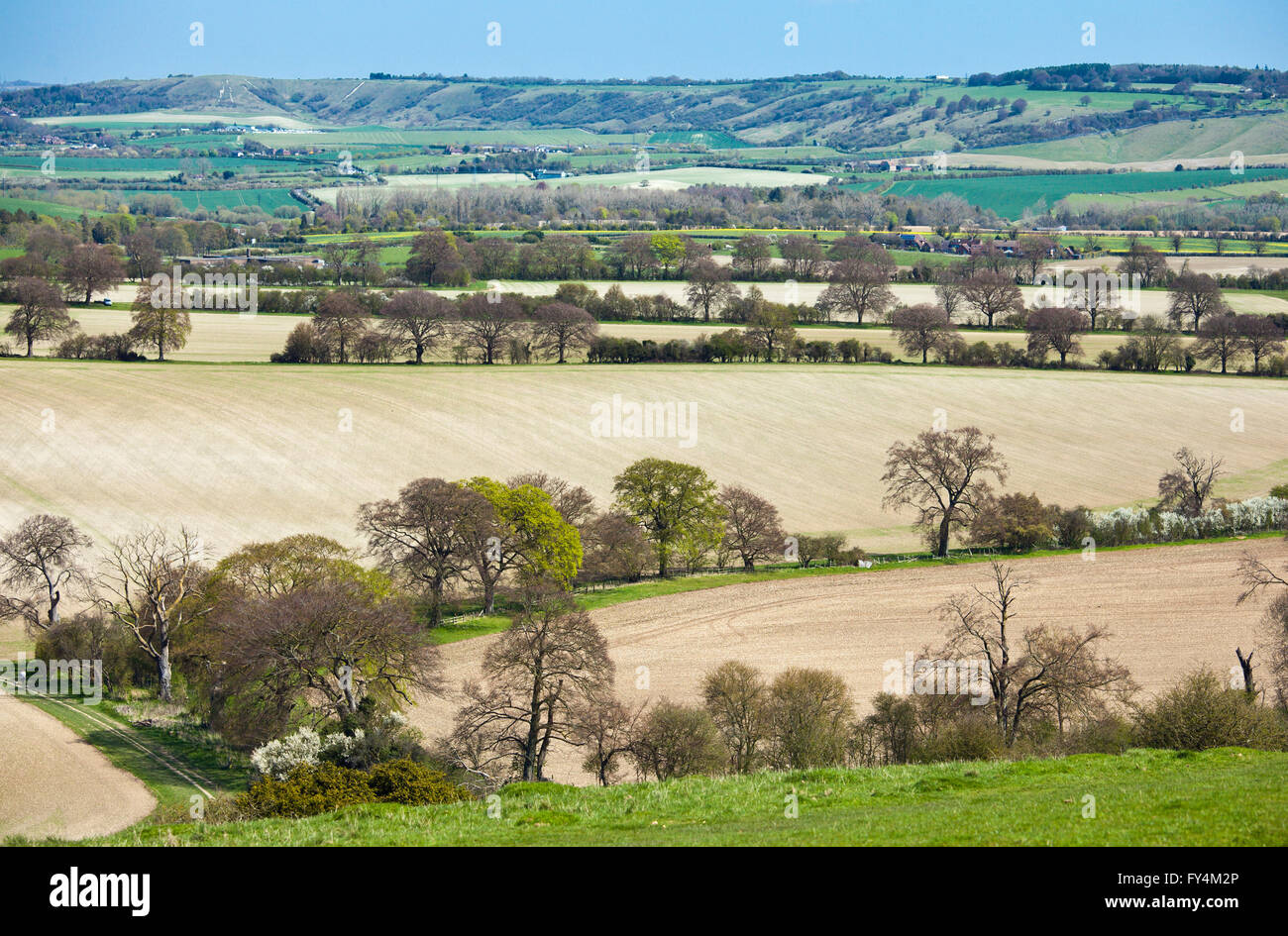 View from Ivinghoe Beacon, the Chilterns. Stock Photo