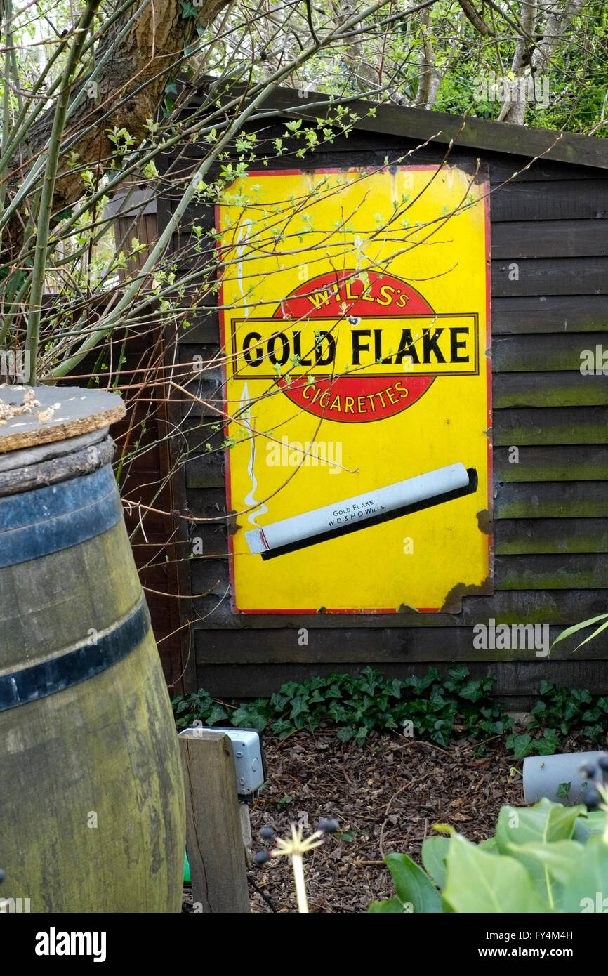 old enamel cigarette advertisement displayed on garden shed england uk - Stock Image