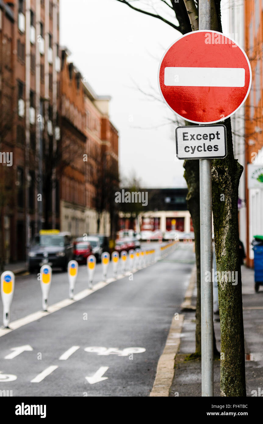 Row of bollards separating a cycle lane from motor vehicles with a sign warning that no vehicles can enter except - Stock Image