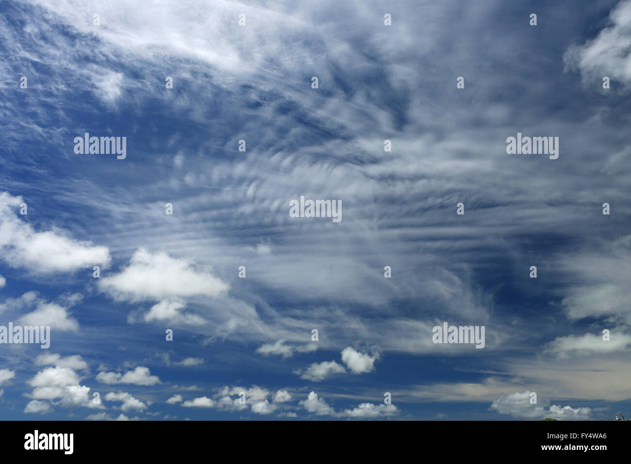 White, fluffy clouds in the blue sky - Stock Image
